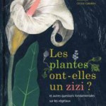Les plantes ont-elles un zizi