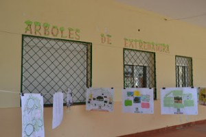 "Exposición ""Árboles de Extremadura"""
